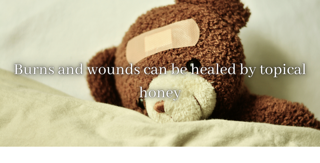 benefits of honey for burns and wounds